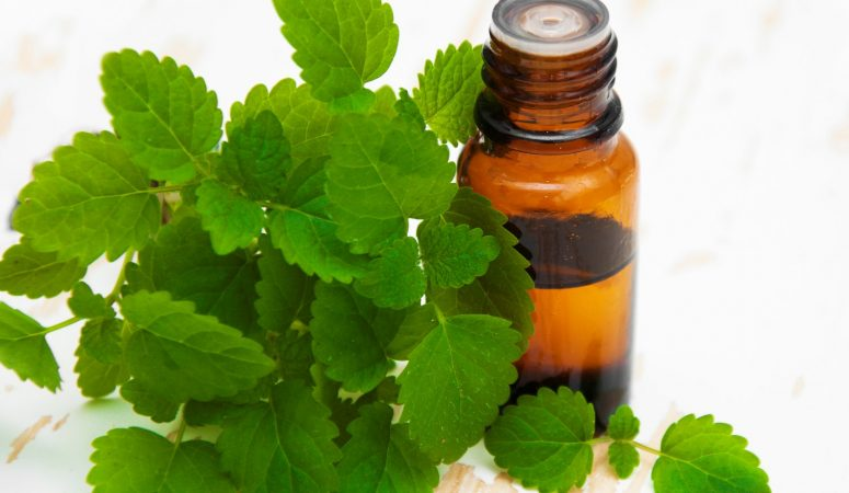 8 uses for peppermint essential oil